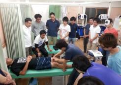 膝の構造と手技操作を学ぶ